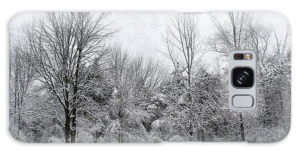Winter's Wonder Galaxy Case by Kathi Mirto