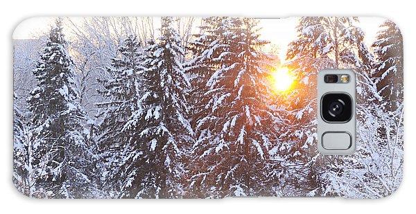 Wintry Sunset Galaxy Case by Larry Ricker