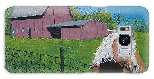 Wisconsin Barn Galaxy Case
