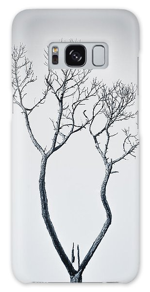 Wishbone Tree Galaxy Case