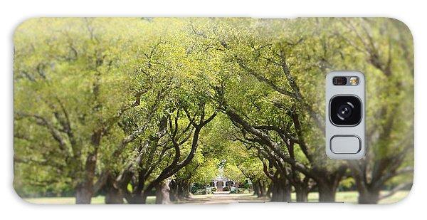 Wister Gardens Belzoni Galaxy Case