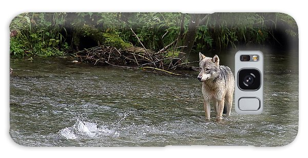 Wolf At Fish Creek Galaxy Case