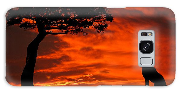 Wolf Calling For Mate Sunset Silhouette Series Galaxy Case