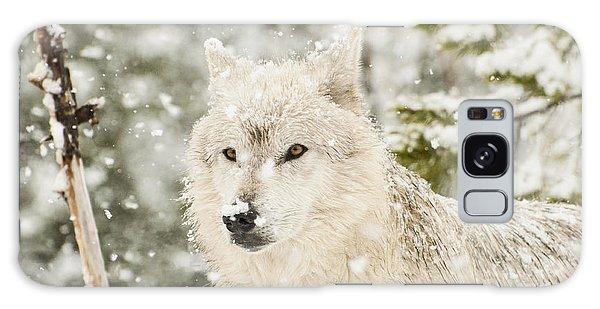 Wolf In Snow Galaxy Case