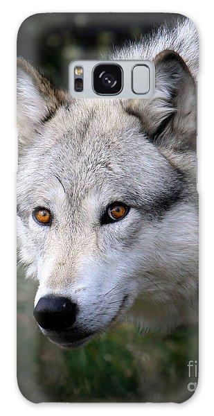 Wolf Stare Galaxy Case