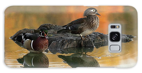 Wood Ducks Galaxy Case