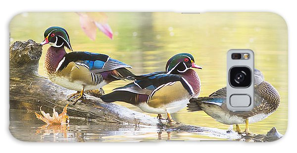 Wood-ducks Panorama Galaxy Case