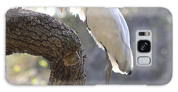 Wood Stork At Magnolia Cemetery    Tery Galaxy Case by Jeanne Kay Juhos
