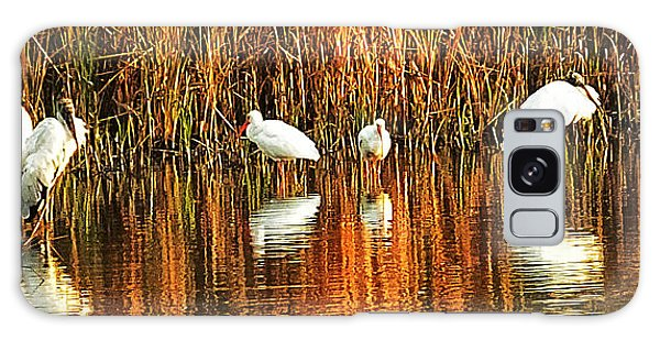 Wood Storks And 2 Ibis Galaxy Case by Bill Barber