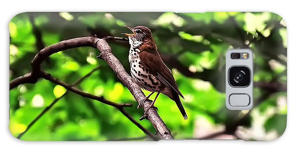 Wood Thrush Singing Galaxy Case