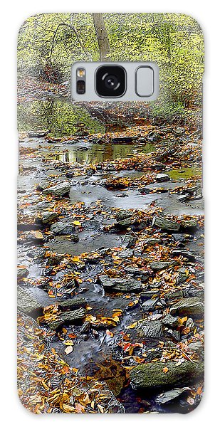 Woodland Brook In Fall Montgomery County Pennsylvania Galaxy Case by A Gurmankin