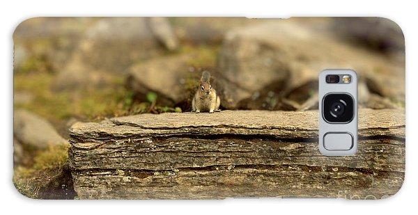Woodland Critter Galaxy Case