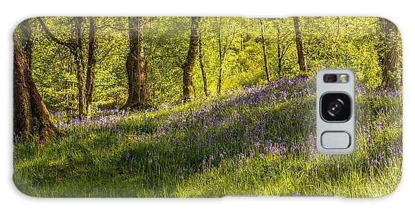 Bluebell Galaxy Case - Woodland Of Bluebells by Amanda Elwell