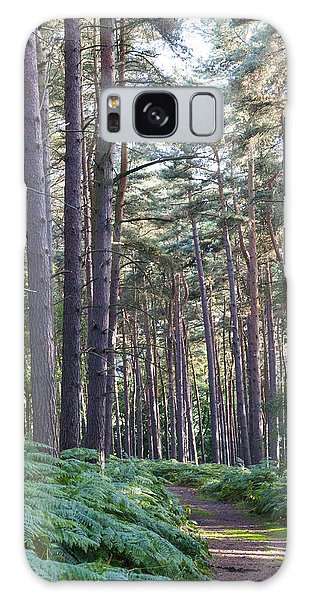Woodland Path Galaxy Case