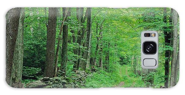 Woodland Trail Galaxy Case by Alan L Graham
