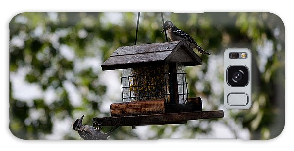Woodpeckers At Dinner Galaxy Case