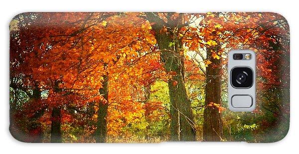Woods In Autumn Galaxy Case
