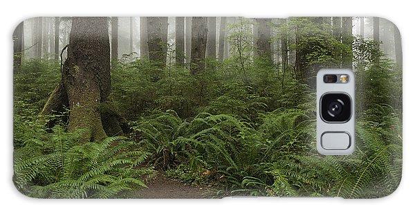 Woods Trail Galaxy Case
