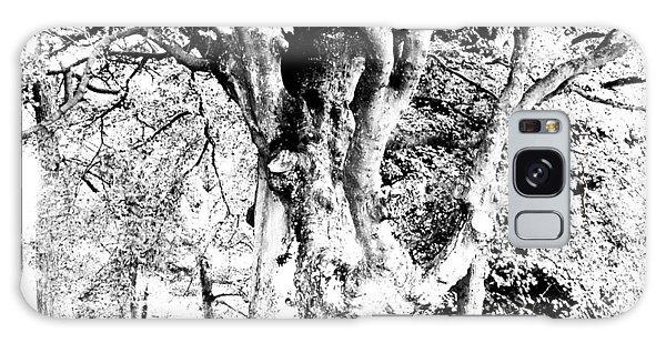 World Tree Galaxy Case