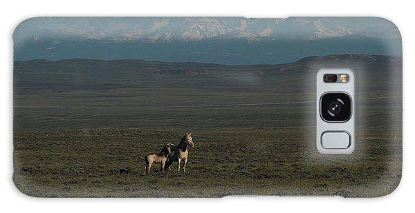Wyoming Beauty Galaxy Case