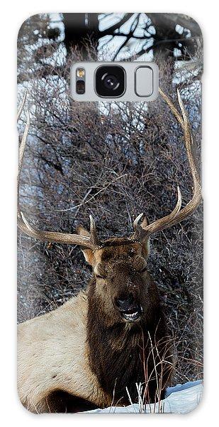 Wyoming Elk Galaxy Case