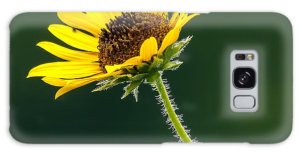 Yellow And Green Delight Galaxy Case by David Lester