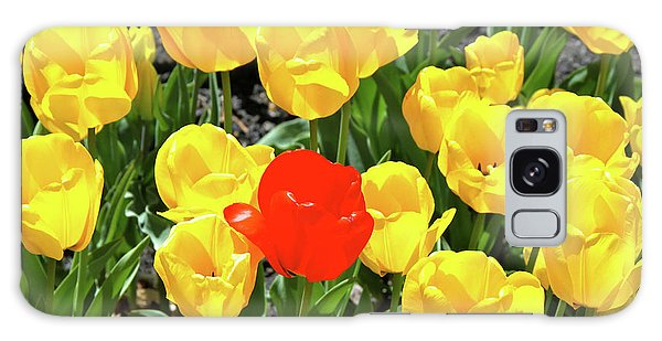 Yellow And One Red Tulip Galaxy Case
