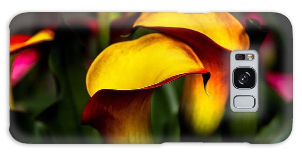 Yellow And Red Calla Lily Galaxy Case by Menachem Ganon