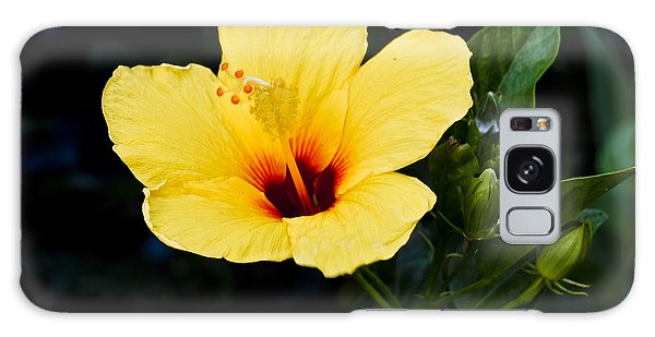 Yellow And Red Hibiscus Galaxy Case
