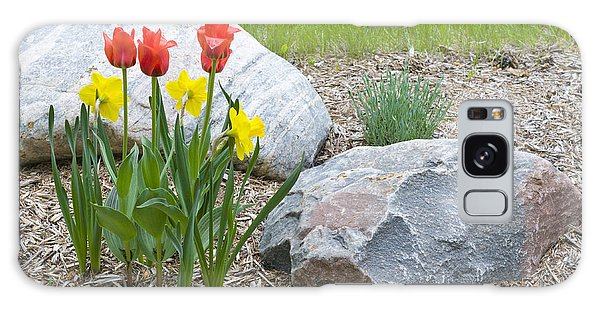 Yellow And Red Tulips With Two Rocks Galaxy Case