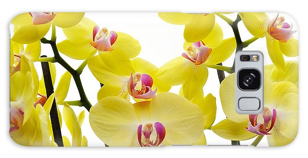 Yellow Beauties Galaxy Case by Tine Nordbred