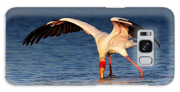 Ibis Galaxy S8 Case - Yellow-billed Stork Hunting For Food by Johan Swanepoel