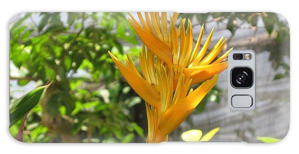 Yellow Bird Of Paradise Galaxy Case