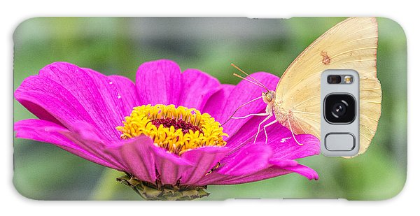 Galaxy Case featuring the photograph Yellow Butterfly  by Jeanne May