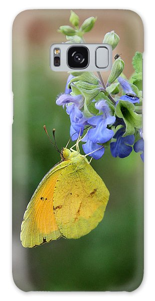 Yellow Butterfly On Blue Sage Galaxy Case