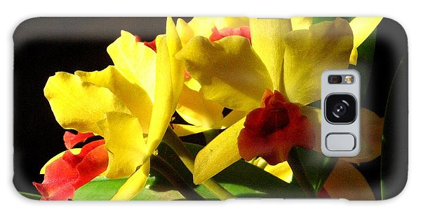 Yellow Cattleya Orchid Galaxy Case
