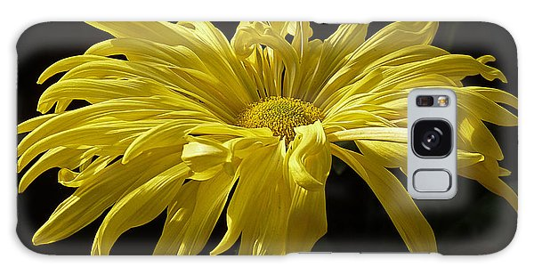 Yellow Chrysanthemum Galaxy Case