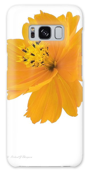 Yellow Coreopsis Galaxy Case