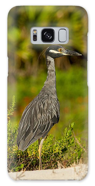 Yellow Crowned Night Heron Dune Watch Galaxy Case