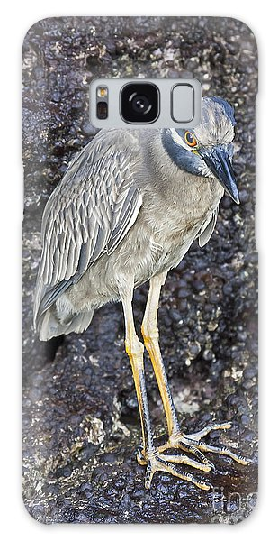 Yellow-crowned Night Heron Galaxy Case