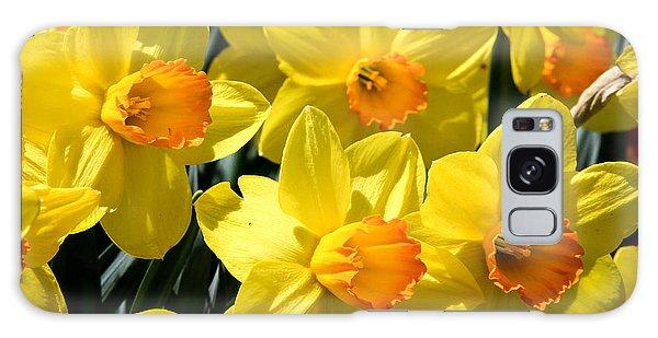 Yellow Daffodils Galaxy Case by Menachem Ganon