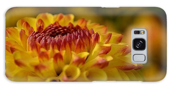 Yellow Dahlia Red Tips Galaxy Case
