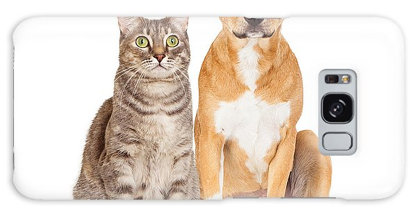Yellow Dog And Tabby Cat Galaxy Case