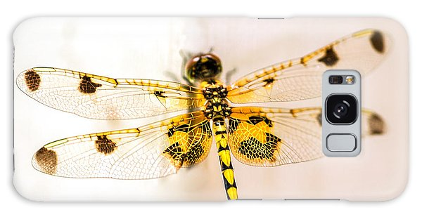 Yellow Dragonfly Pantala Flavescens Galaxy Case by Iris Richardson