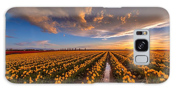 Yellow Fields And Sunset Skies Galaxy Case