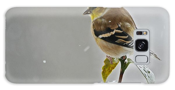Yellow Finch Galaxy Case by Denise Romano