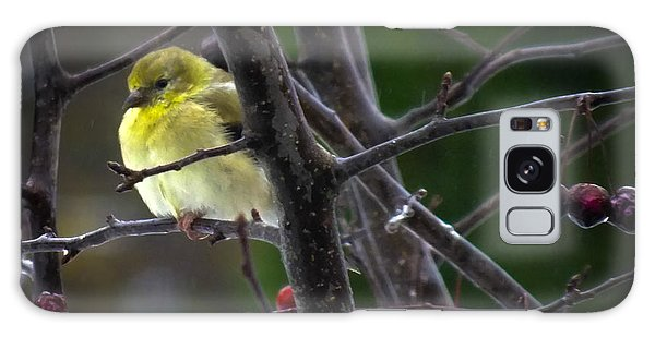 Yellow Finch Galaxy Case