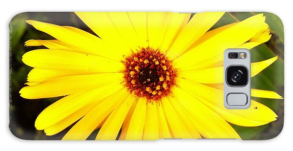 Yellow Flower 12 Galaxy Case