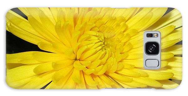 Yellow Flower Closeup Galaxy Case by Barbara Yearty