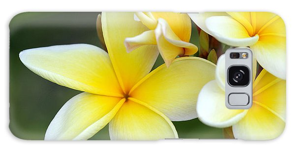 Yellow Frangipani Flowers Galaxy Case
